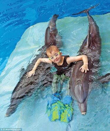 delfini5