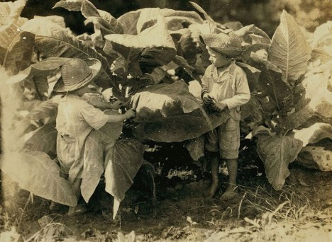 09child_labor_united_states_lewis_hines_roll