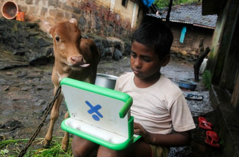 Harish, a school boy uses a laptop as a calf stands next to him, on the eve of International Literacy Day at Khairat village
