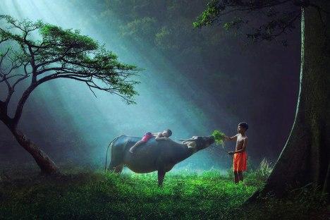 11Indonesia1
