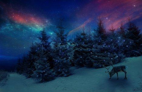 christmas_by_gemlovesyou-d5n4wyd